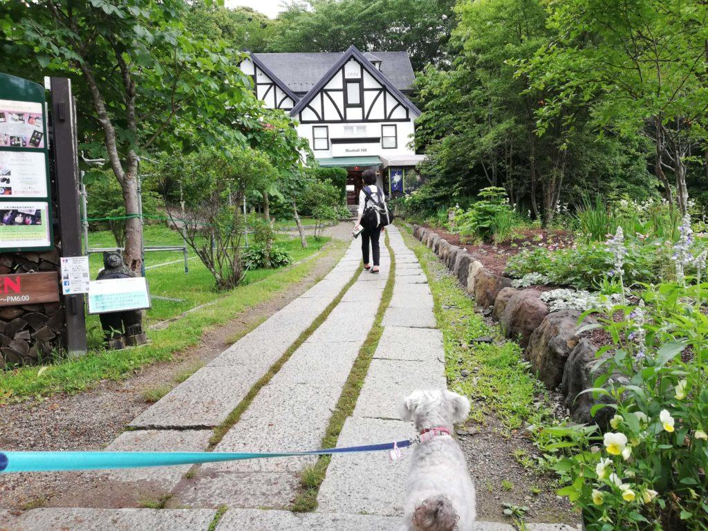 山梨県 ペットと遊ぶ 萌木の村
