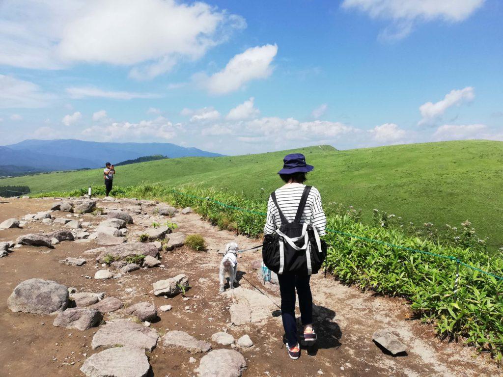 長野県内 ペットと遊ぶ ころぼっくるひゅって
