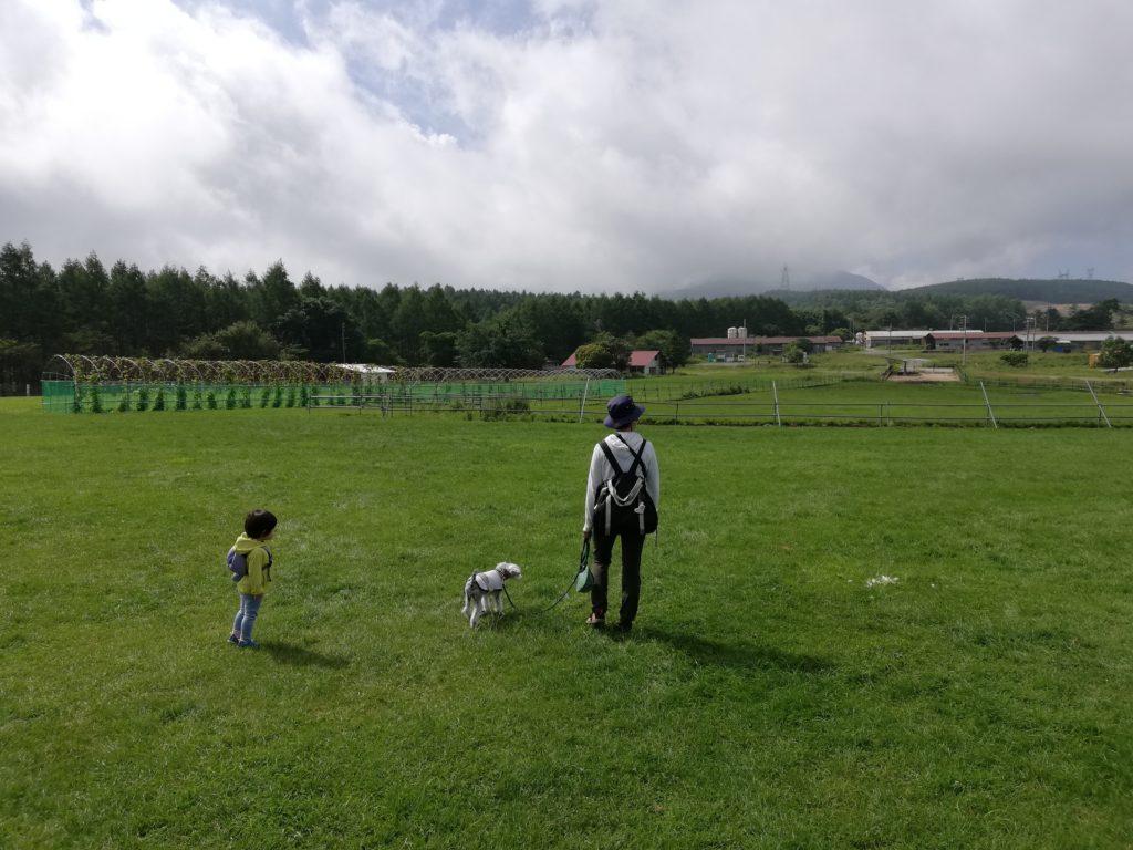 ペットと遊ぶ 長野県長和町 長門牧場 子どもやワンコが自由に歩き回れる