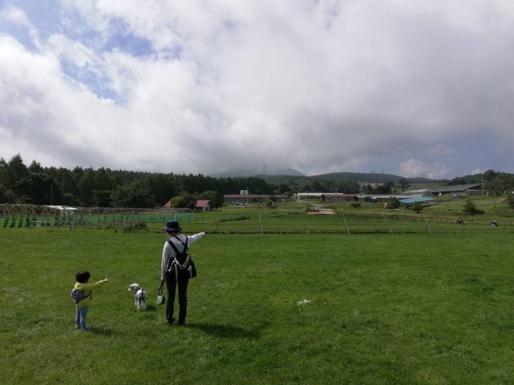 ペットと遊ぶ 長野県長和町 長門牧場 ワンコと牧場