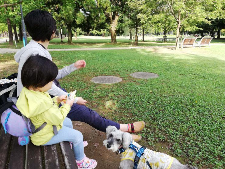 ペットとお出かけ 岐阜県各務原市 学びの森