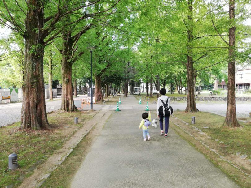 岐阜県各務原市 学びの森 冬ソナストリート