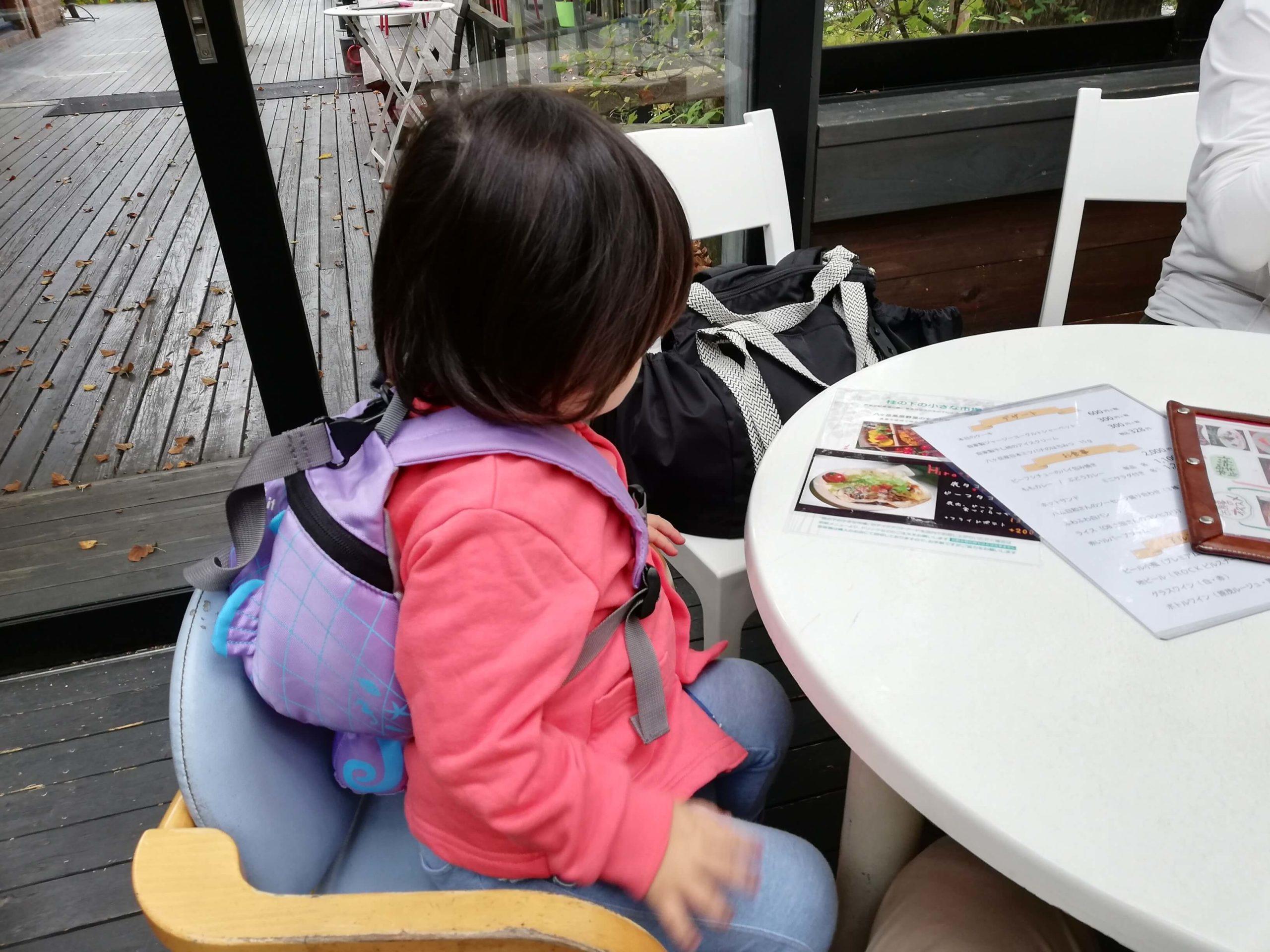 ペットお出かけ 山梨県北杜市 八ヶ岳倶楽部 レストラン 子ども用の椅子もある