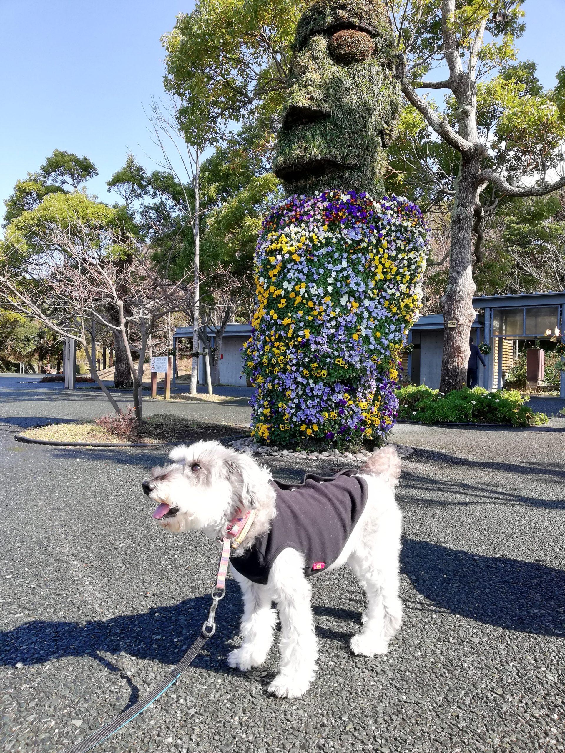静岡県内でペットと遊ぶ 静岡県浜松市 浜名湖ガーデンパーク モアイ像