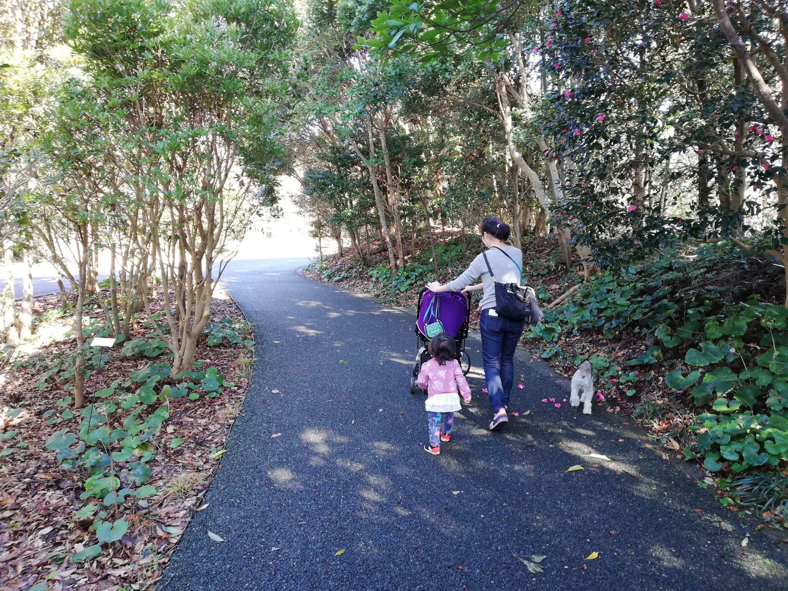 静岡県内でペットと遊ぶ 静岡県浜松市 浜名湖ガーデンパーク ベビーカーでも歩きやすい