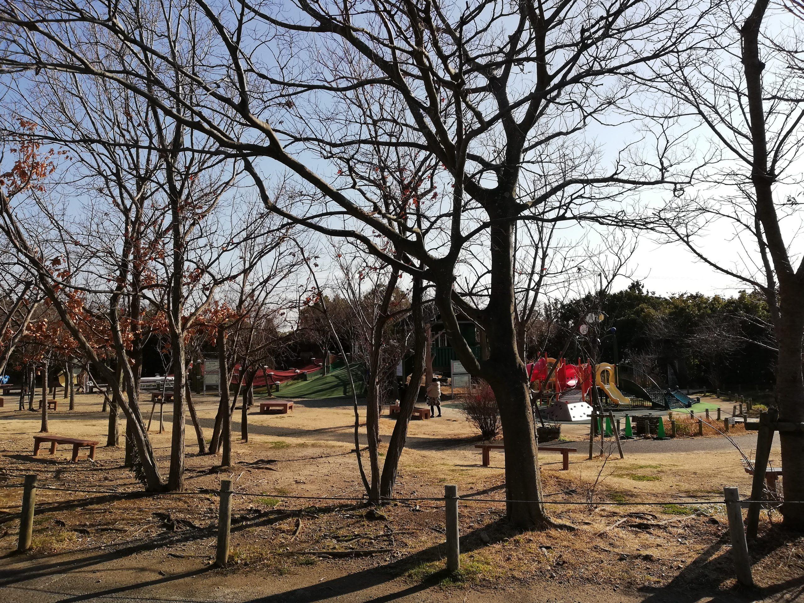 静岡県内でペットと遊ぶ 静岡県浜松市 浜名湖ガーデンパーク 公園