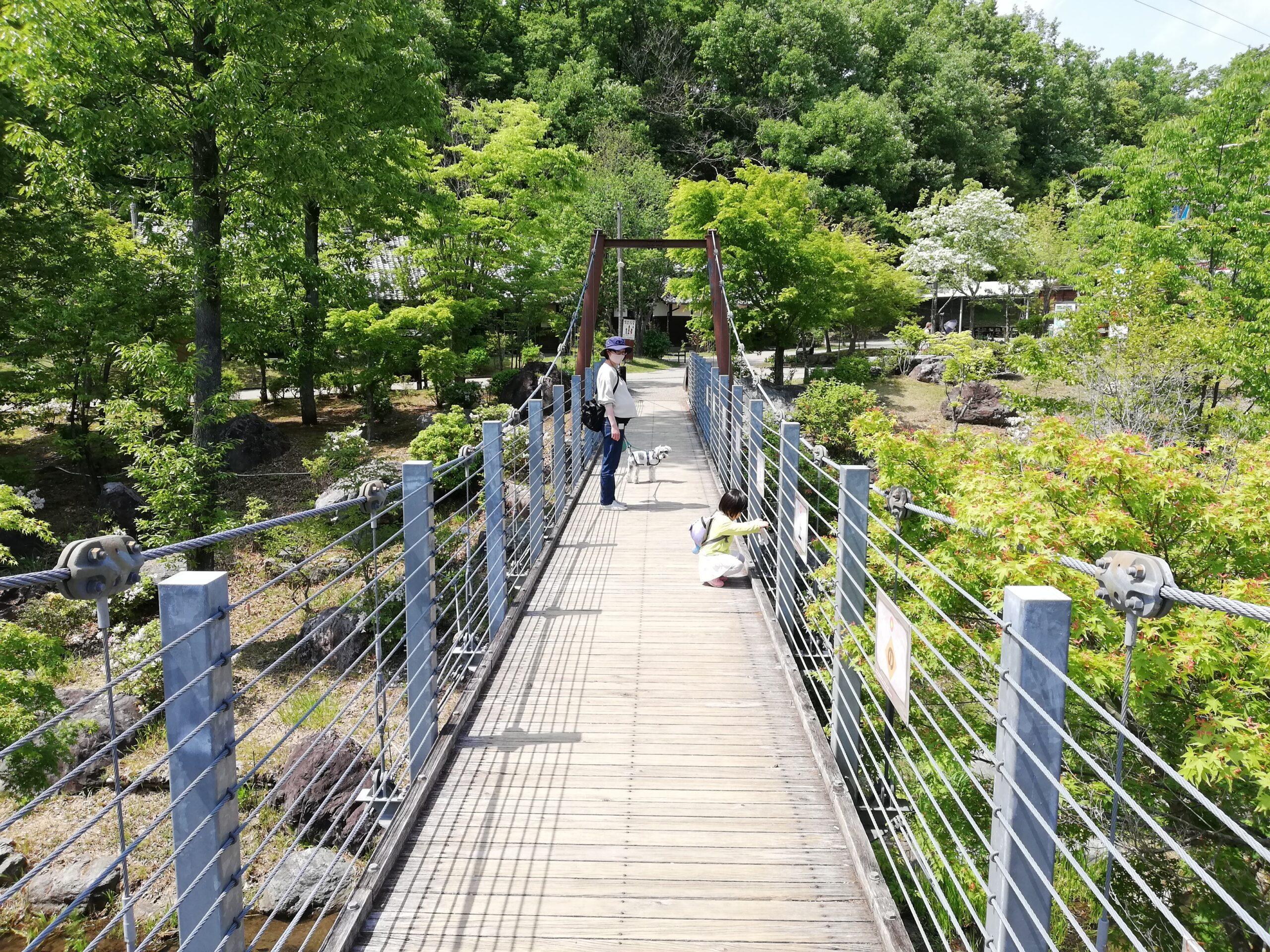 ペットとお出かけ 岐阜県美濃加茂市 ぎふ清流里山公園 子連れで楽しめる公園